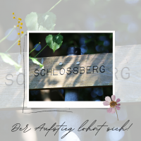 Schloßberg IV